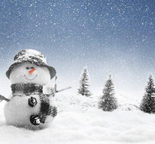 winter_christmas_snowmen_460529