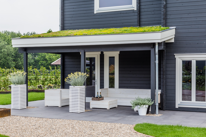 Fabelhaft Dachbegrünung | Schönreiter Baustoffe | Bauen & Modernisieren #PD_03